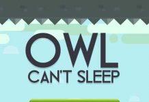 Owl Can't Sleep