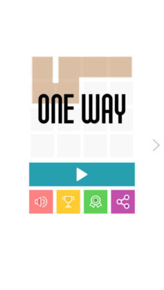 One Way Puzzle